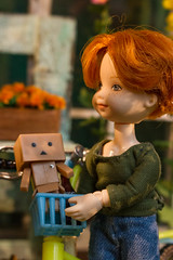 Barclay (kinmegami) Tags: doll hybrid obitsu kelly mattel diorama roombox shabbychic shabby shelly danbo danboard totoro 16 bicycle handmade