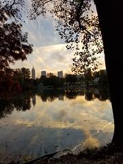Piedmont Park, Atlanta Georgia - 14 (Laura Grace) Tags: 2017 atl atlanta autumn fall ga georgia lakeclarameer midtown november park piedmontpark solowalkshikes walksandhikes