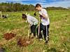 IMG_1849 (Potomac Conservancy) Tags: communityconservation treeplanting virginia leesburg whitesford loudouncounty growingnative volunteer 2017 october fall shovel