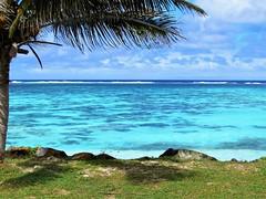 Perfect day (thomasgorman1) Tags: reef coral seascape canon view palmtree colors tropical island rarotonga pacific nature