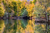 Two Bridges (Ali Yamaner) Tags: bridges lake yedigöller bolu national park nature fall autumn leaves colourful reflection