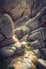 hardly soft (chris.regg) Tags: rocks hard soft lighting detail flowers coast round bretagne