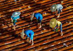 344/365 Tiny People - Saltstick Manufacturer (J.Weyerhäuser) Tags: h0figuren macromonday hmm sticks saltsticks preiser manufacturer salt