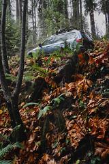 2012 Subaru Forester 2.5x (donaldgruener) Tags: sh forester subaru subaruforester forestservice oregon autumn fallcolors leaves backroads