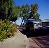 San Jose (bior) Tags: square hasselblad500cm hasselblad kodakfilm mediumformat ektachrome e100vs kodakektachromee100vs expiredfilm sanjose