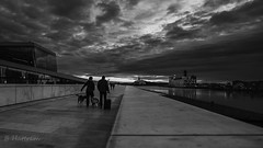 Bon voyage (Hattrem72) Tags: 6d canon contrast cloud cityscape boat water norway oslo sky bw walking travel men dog lines