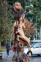 DSC_7975 (Copy) (pandjt) Tags: hope hopebc britishcolumbia carving carvings chainsawcarving sculpture publicart artwalk hopeartwalk woodcarving artwork
