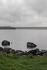 (Housemill) Tags: kompaktkamera sverige sweden huskvarna compact vatten vättern vätterstranden green grönt lake rocks stenblock sten molnigt mulet water sjö cloudy lumix lx5 panasonic pointandshoot pointshoot