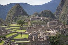 Machu Picchu (48).jpg
