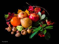 Frutos de otoño. (marijeaguillo) Tags: frutas frutasdeotoño bodegón