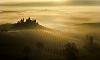 The fog of the Belvedere at dawn