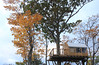 JP_1739 (meche tomotaki) Tags: treehouse mountain niseko hokkaido japan autumn october nature