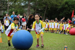 11182017-school42 (EN&Jane (enpan . 潘榮恩)) Tags: 2017 school xun cen sports