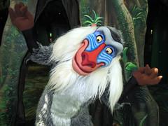 Rafiki (meeko_) Tags: rafiki monkey thelionking characters disneycharacters conservationstation attraction rafikisplanetwatch disneys animal kingdom disneysanimalkingdom themepark walt disney world waltdisneyworld florida