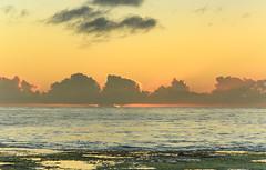Sunrise Seascape (Merrillie) Tags: daybreak rockshelf landscape nature rocky mountains sunrise centralcoast newsouthwales sea water nsw sky shoreline ocean photography dawn waterscape coastal rocks outdoors brokenbay australia coast seascape pearlbeach