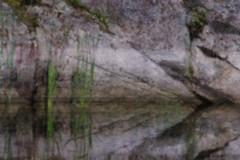 granite impressions (RhinoSkin) Tags: granite cattail water reflections
