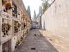 _A194493 (elsuperbob) Tags: ceccano frosinone lazio italy italia newtopographics emptyspaces cemetery flowers tombs deadend necropolis cimitero