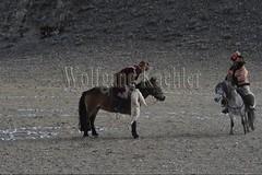 30101788 (wolfgangkaehler) Tags: 2017 asia asian centralasia mongolia mongolian westernmongolia ulgii ölgii bayanulgiiprovince altaimountains altaymountains altaymts goldeneaglefestival people person kazakh competing competition competitor game games horse horseriding horseback horsebackriding horsebackrider traditionalgame kukhbar fighting goatskin kokpar
