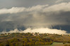 finally rain is coming (phacelias) Tags: darkclouds clouds wolken donkerewolken nuvolescure nuvole nuvoloso autumn herfst autunno