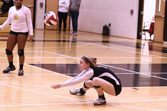 IMG_1074 (SJH Foto) Tags: girls volleyball high school lancaster mennonite littlestown hs team