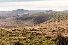 Taw Head, Dartmoor.
