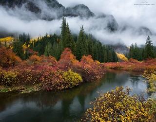 Pacific Autumn