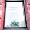 untitled (kaumpphoto) Tags: window house rolleiflex 120 tlr stone pink flower etch rectangle minneapolis street secure mediumformat transparent glare reflection