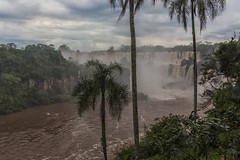 Argentina Side B25A7048 (raddox) Tags: iguazu iguacu southamerica falls water argentina waterfall