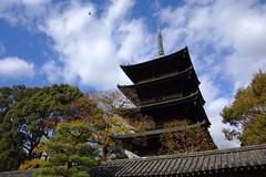 2017/12 東寺 #01 (*Setuka) Tags: kyoto 京都 九条 大宮 東寺 五重塔