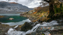 A quiet corner of Peris lake (Einir Wyn Leigh) Tags: landscape wales cymru lake autumn stream water mountain slate quarry llanberis outside aqua silent trees rocks rural pleasure friends fun nikon reflection november