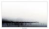 Pike fisher (Zena Perture) Tags: pike fishing lake outdorr nature fog scandinavia sweden ngc