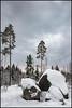 Bergön (Jonas Thomén) Tags: winter vinter snö snow stone sten trees träd bergö vandringsled moln clouds skog forest landscape landskap hdr