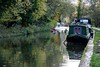 Autumn on the Canal (Evoljo) Tags: kennetandavoncanal wiltshire water barge boat rowing trees autumn float nikon d500