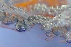 Blown Glass (Arkle1) Tags: macromondays stonerhymingzone