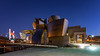 Guggenheim by night (Didier Bottin) Tags: bilbao guggenheim espagne spain nightshot nightscape