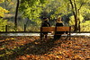 enjoyable talking. (cate♪) Tags: bench couple taik pond autumn afternoon light shadow