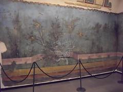 Gli affreschi della villa di Livia a Palzzo Massimo _02