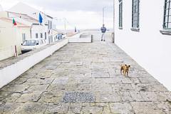 Azores elegidas-62 (Caballerophotos) Tags: 2016 azores sanmiguel portugal travel travelling trip viajando viaje