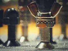 Chess for Marco Monday (VintageLensLover) Tags: hmm macromonday chess figures bokeh schärfentiefe schärfeverlauf dof gamesorgamepiece schach schachfiguren schrauben