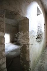La Villa di Livia _20
