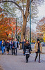1339_0599FLOP (davidben33) Tags: newyork central park street streetphotos people nature trees bushes leaves colors green yellow sky cloud lake portraits women girl cityscape landscape autumn fall 2017 beaut manhattan blue beauty oilpaintfilter