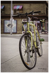 Bikes of Toronto - Minion (KaushikBiswas28) Tags: bikesoftoronto 35mm filmphotography downtowncamera iluvtoronto bikes stilllife fatalframes framedtoronto imagesoftoronto street streetphotography urban streetvision analog canonae1 bokeh cycle 6ix ishootfilm lovefilm tdot goderich torontophotographers yellow