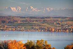Swiss Autumn Bliss (hapulcu) Tags: montvully ch freiburg fribourg morat murten murtensee schweiz suisse suiza svizzera switzerland automne autumn autunno herbst høst lac lake toamna