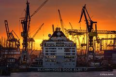 Dock Elbe 17 - 04121704 (Klaus Kehrls) Tags: hamburg hamburger hafen blohmvoss werft schiffe kräne elbe nacht nachtaufnahme industrie boot schiff wasser himmel gebäude stadt sonnenuntergang