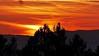 Spanische Luftströmung am Nationalpark-Himmel (waidlerwiki) Tags: himmel wolkenstimmung woodlands luftströmung spanien romantik spätherbst tierfreigelände luchsgehege sky nationalparkbayerischerwald bavarianforestnationalpark bayerischerwald bayerwald bayern bavaria germany landkreisfreyunggrafenau landscape landschaft witterung spain