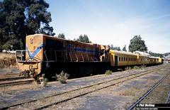 2939 D1564 Bridgetown 10 April 1982 (RailWA) Tags: railwa philmelling westrail 1982 d1564 bridgetown
