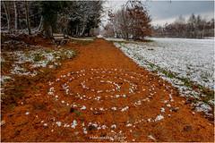 spirale (Hanspeter Ryser) Tags: hildisrieden laub schee landart kunst art winter landschaft