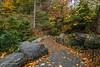 Through Shades of Autumn (CVerwaal) Tags: autumn centralpark northwoods newyork ny usa sonyrx100iii