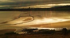 When is an Island not  an Island ? (dodagp) Tags: uk scotland easternscotland tidalislands cramond estuaries rivers firthofforth drumsands dalmenyestate sssi spa ramsar unescosite nature naturespalette waterscapes tidalestuaries