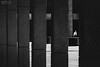 Smoke Break (26/05/2015) (Matthew Trevithick Photography) Tags: 2015 london ontario canada matthewtrevithick may downtown downtownlondon cityhall plaza reginaldcoopersquare smoke break smoking cigarette
